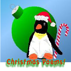penguin at Christmas