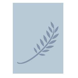 Grameen Logo Nobel Peace Prize Winner