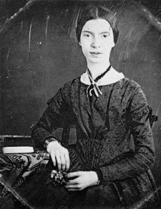 the theme of death in the works of emily dickinson Emily dickinson critical essays  they are consonant with works published by dickinson's female  poem because i could not stop for death as with most of emily dickinson's poetry, the .