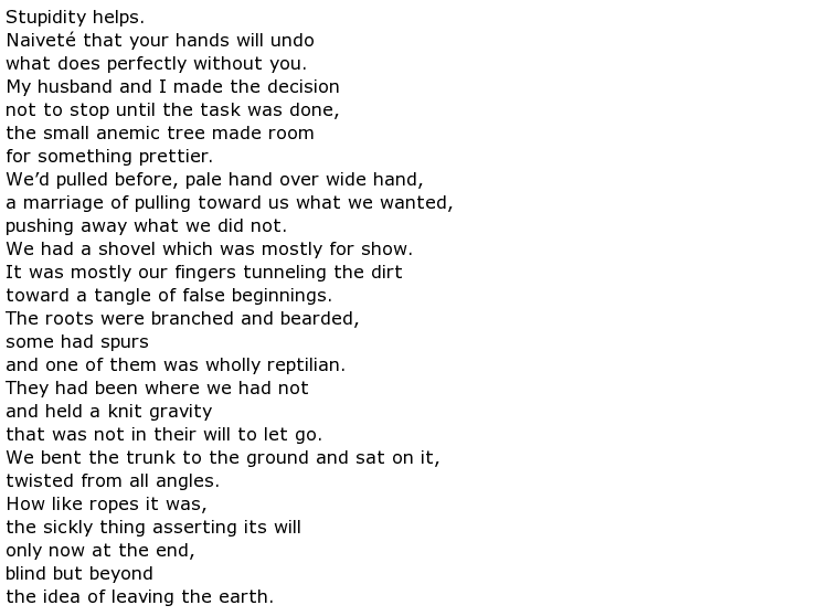 poems on trees my poetic side